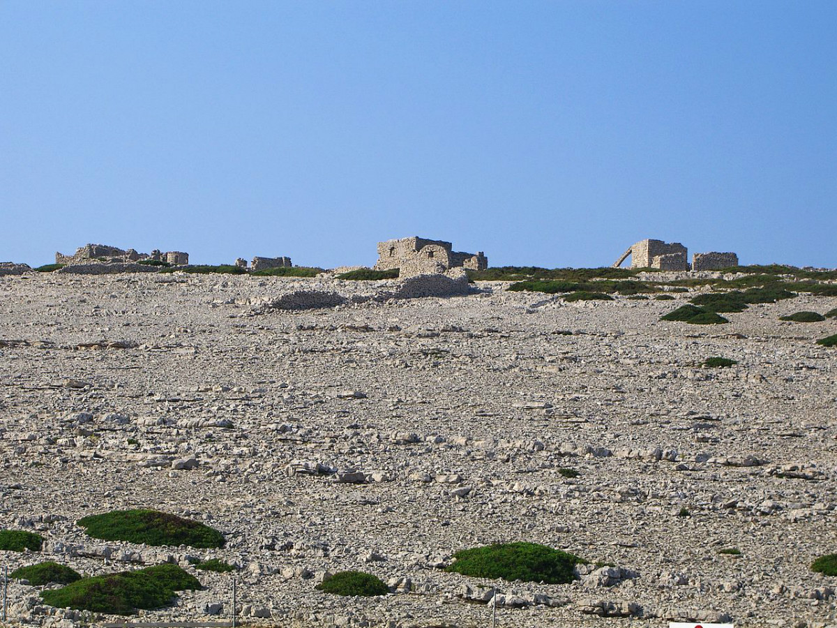 hrib na Kornati