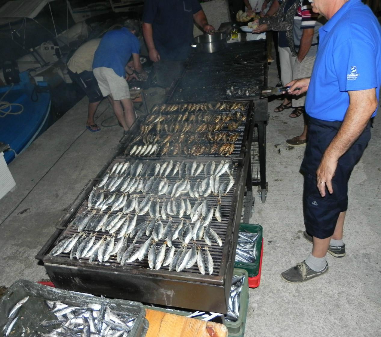 Ribe in Kornati
